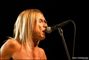 Iggy and the Stooges-12.jpg