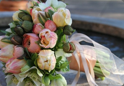 25722_370318841805_370258671805_4166061_3470482_n  fleursfrance.wordpress fleurs de france