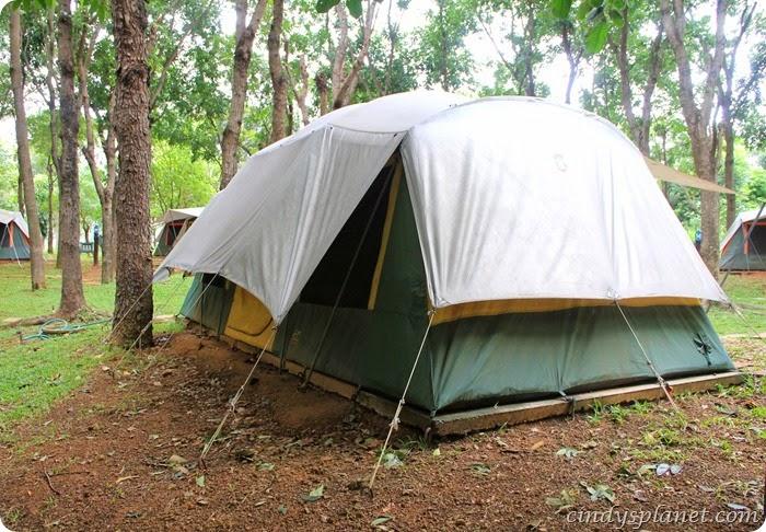 chok chai farm camp (5)