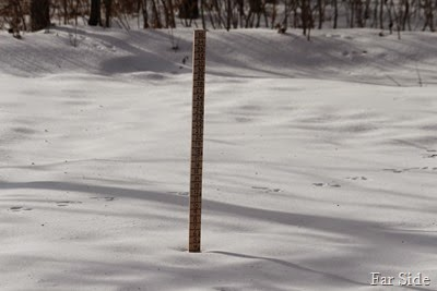Four Inches at the snowstick