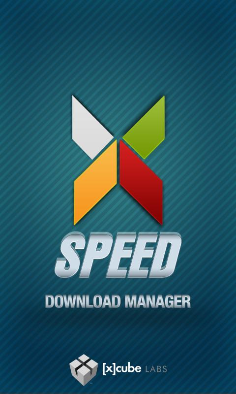 Download Manager - screenshot