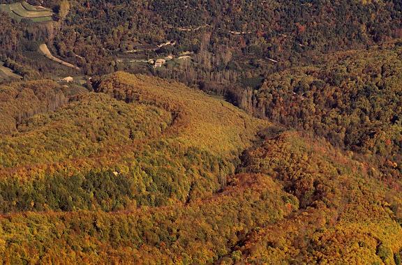 Boscos de la vessant nord del Matagalls vists des de la Creu. Viladrau, Osona, Barcelona 1994