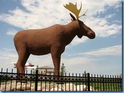 8506 Saskatchewan Trans-Canada Highway 1 Moose Jaw - Mac, The World's Largest Moose at Visitor Centre