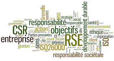 Energie et développement : définition de la RSE (responsabilité sociale ou sociétale de l'entreprise)