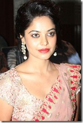 Actress Bindu Madhavi at Desingu Raja Movie Press Meet Stills