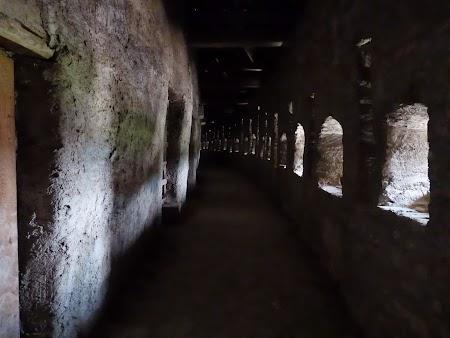 Fortificatii sasesti in Transilvania: zona de lupta a cetatii Prejmer