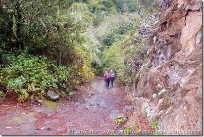 6834 Barranco Andén-Cueva Corcho(Barranco Andén)