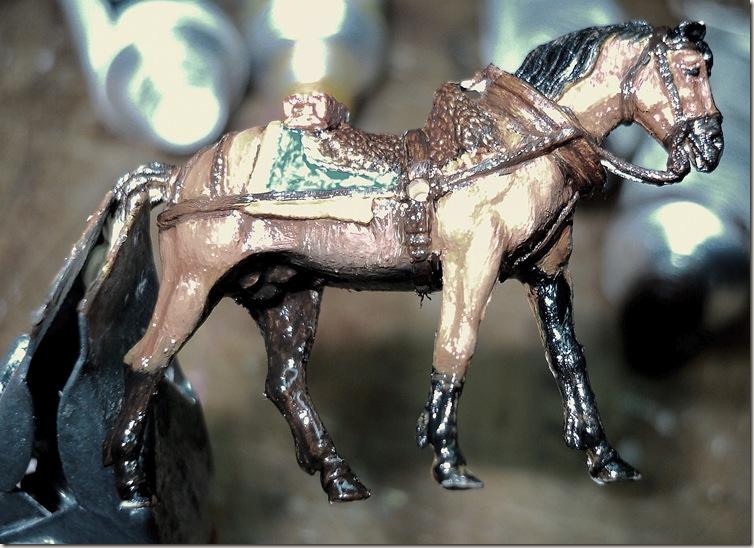 caballo 5 06