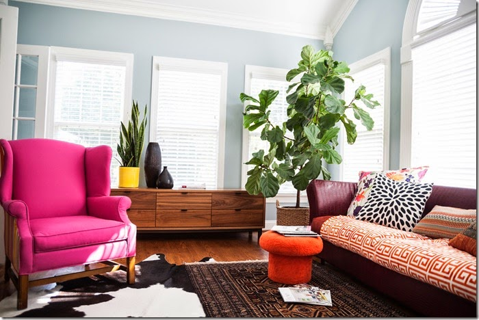 Fiddle Leaf Fig in Sunroom- design addict mom