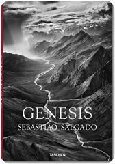 salgado_genesis_trade