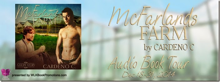McFarlands Farm Audio - banner (1)