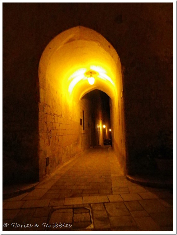 Christmas Concert in Mdina (23)
