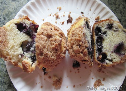 blueberry muffins0708 (11)