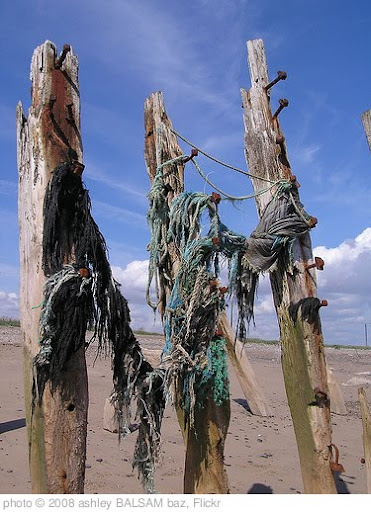 'Rope and posts' photo (c) 2008, ashley BALSAM baz - license: http://creativecommons.org/licenses/by/2.0/
