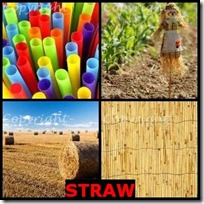 STRAW- 4 Pics 1 Word Answers 3 Letters