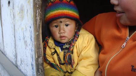 Refugiati tibetani din Darjeeling