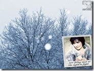 10_SA_Winter_1264x1055