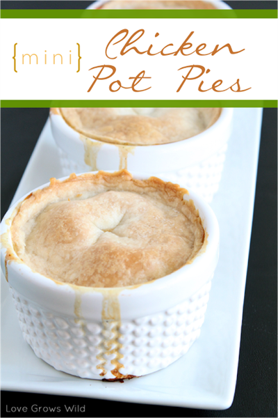 Chicken_Pot_Pie_by_Love_Grows_Wild_for_Sumo's_Sweet_Stuff_7