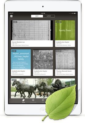 这Ancestry App can show a list of all the hints from your tree