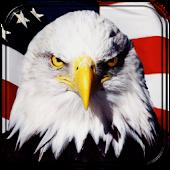 USA GO Theme Os67