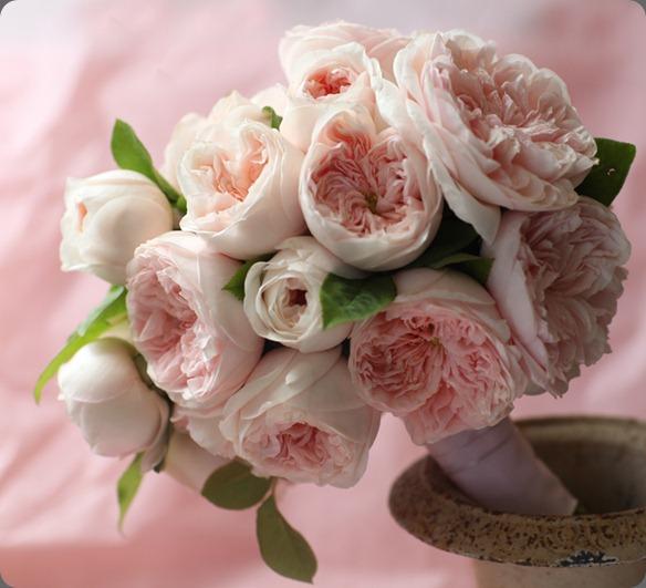 6a0120a5914b9b970c0153909e6f03970b-800wi florali