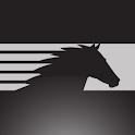 NS Corp logo