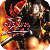 Ninja Gaiden - Beheaded
