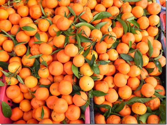 sweet-orange-buns-10
