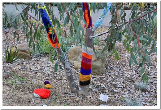 130119_UCDA_AustralianCollection_Natural-Transformations-yarn-bombing_26