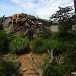 zoo_habitat.JPG