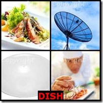 DISH- 4 Pics 1 Word Answers 3 Letters