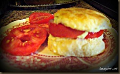 tomato biscuit