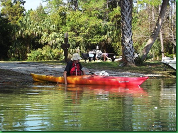 Salt Springs Saturday 010