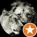 Loving_Lioness