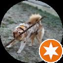 Immagine del profilo di antonio palumbo