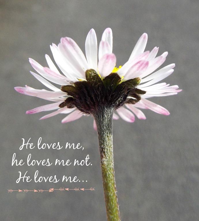 [he-loves-me5.jpg]