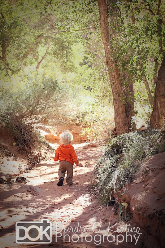 dreamy photo of toddler on path
