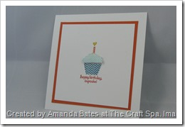 Patterned Occasions, The Craft Spa, SAB 2013, Stampin Up, SU (4)