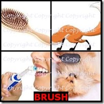 BRUSH- 4 Pics 1 Word Answers 3 Letters