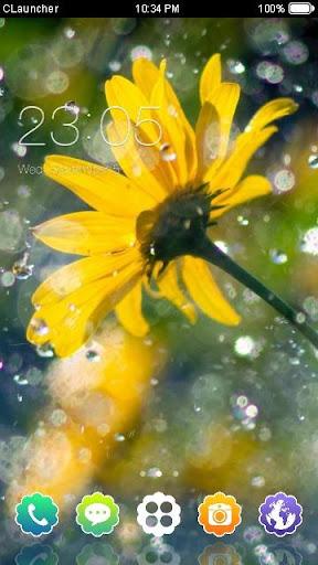 Yellow Flower Clauncher Theme