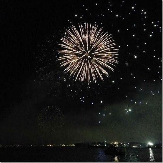 fireworks  (50)
