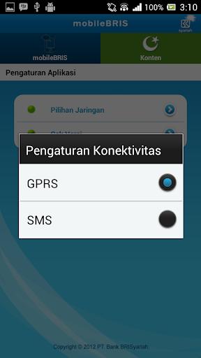 mobileBRIS screenshot