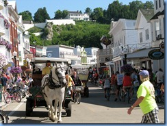 3295 Michigan Mackinac Island