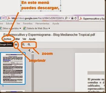ayuda visualizar a google doc