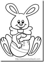 conejos pascua  (7)