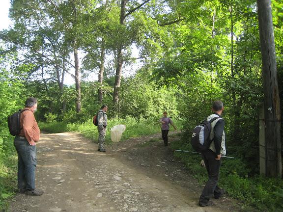 Près d'Anisimovka (Primorskij Kraj, Oussouri), 26 juin 2011. Photo : G. Charet