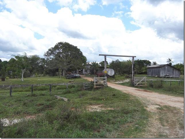 BR-319_Humaita_Manaus_Day_2_DSC05426