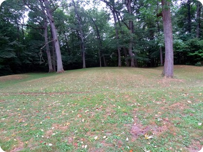 Fiddleback mound
