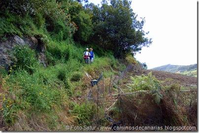 5490 La Laguna-Vueltas Acero-Firgas