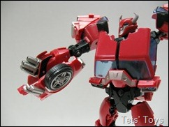 Cliffjumper (18)